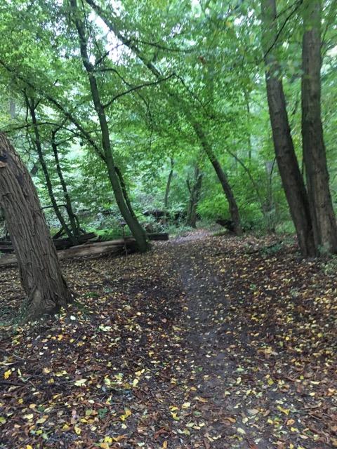 Wanderweg Erpetal ab Hoppegarten