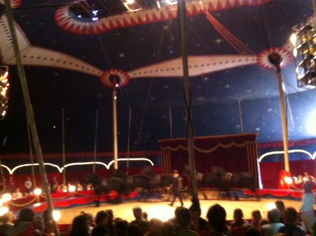 Im Cirkus-Zelt vom Circus Berolina im Tierpark in Waltersdorf