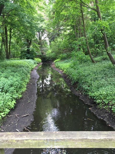 Erpe - Fluss beim Schloss Hoppegarten