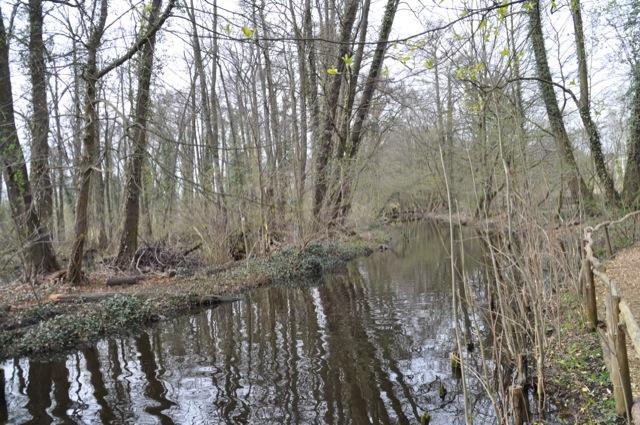 Kanal & Wasser - Kleiner Spreewaldpark Schöneiche