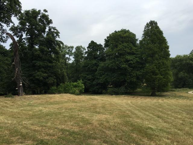 Lenné Park im Schloss Hoppegarten