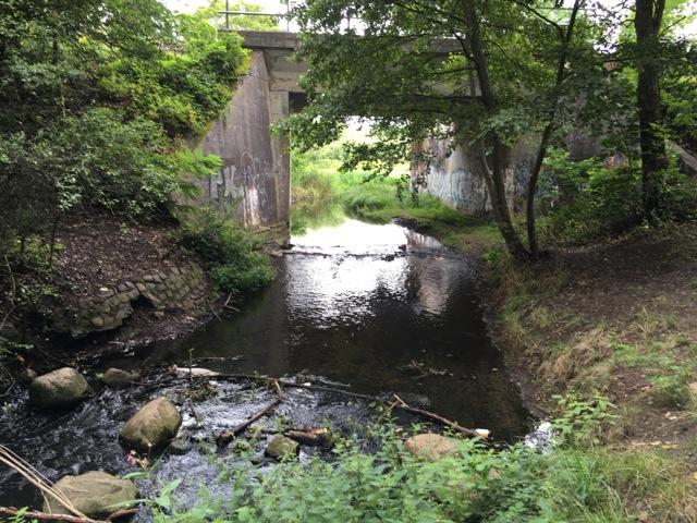 Neuenhagen Mühlenfließ