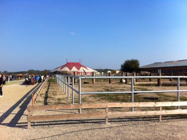 Tierpark in Waltersdorf mit Circus-Zelt